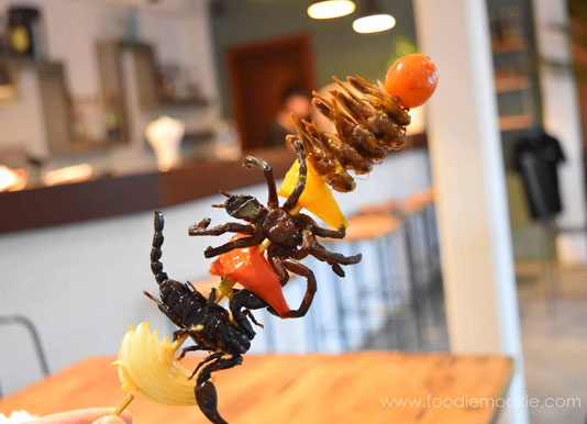 World Edible Insect Day