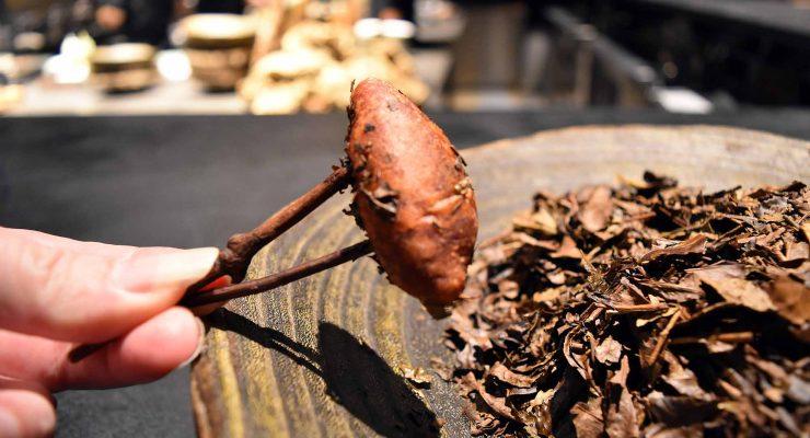 IMG Florilege Tokyo - Projection: Sweet Potato